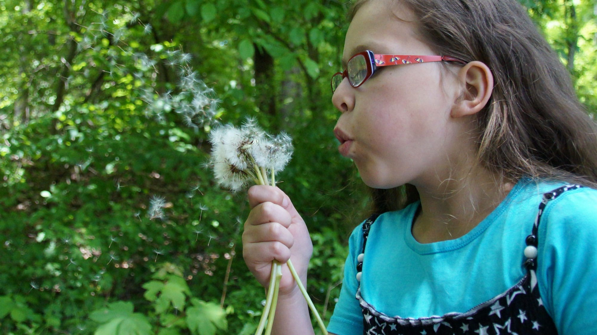 Tackling child behaviour problems effectively requires better understanding of differences between an 'orchid' child and a 'dandelion' child
