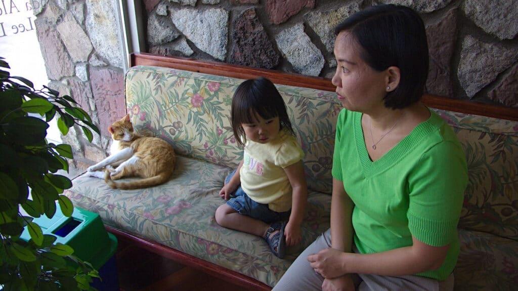 antenatal depression and toddler behavior
