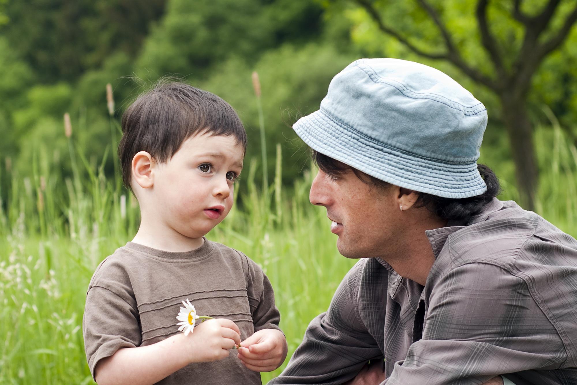 Cognitive development theory: Vygotsky sociogenesis